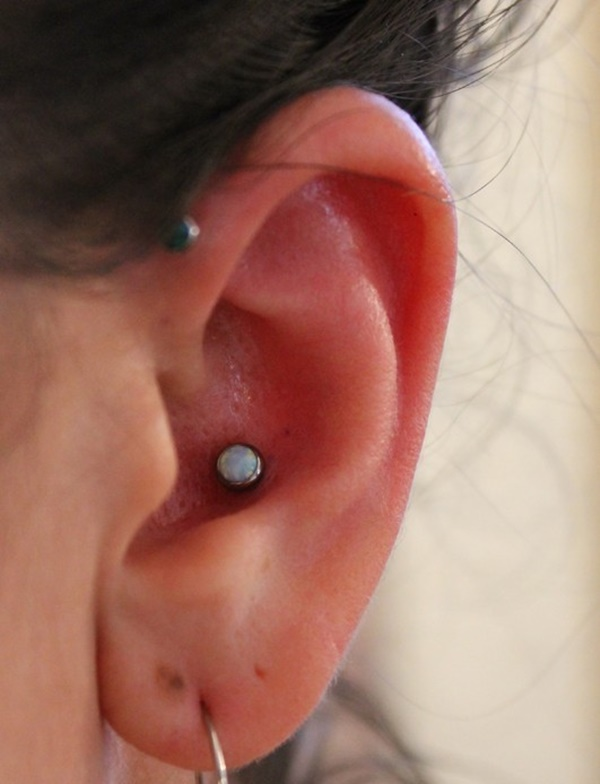 Inner & Outer Conch Piercing (53)