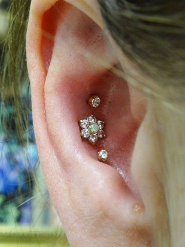 Inner & Outer Conch Piercing (8)